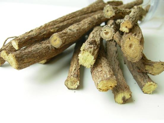 Лечебный корень — солодка от кашля