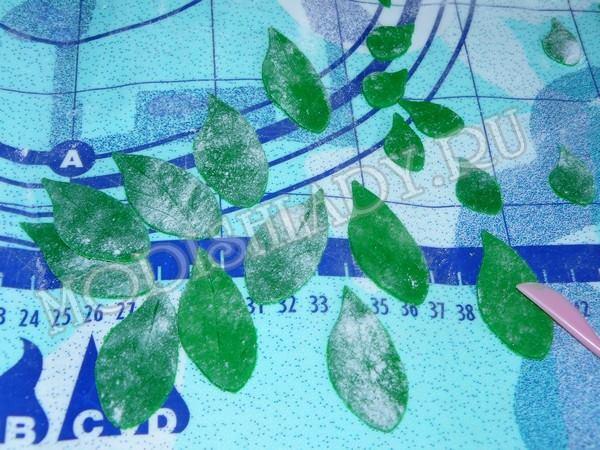 листики из мастики, фото